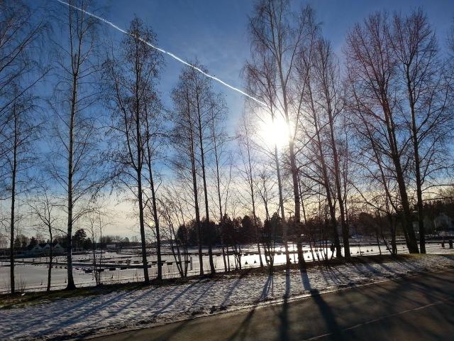 talvi13